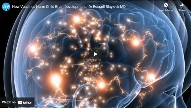 Russell Blaylock MD:  How Vaccines Harm Child Brain Development